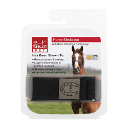 Horse Medallion (Ti)
